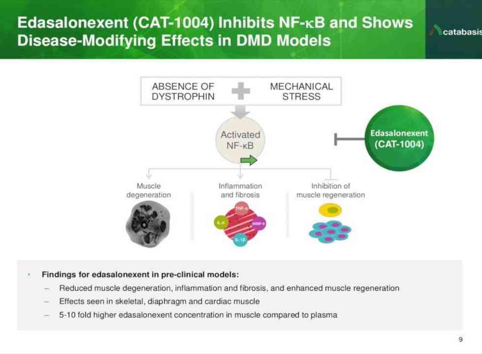 From: https://i.ytimg.com/vi/v8Zv3W0BQII/maxresdefault.jpg Dobré zprávy od Catabasis Pharmaceuticals