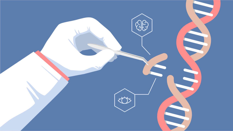 From: https://geneticliteracyproject.org/wp-content/uploads/2018/08/crispr-8-3-18.jpg Editace genomu - nadějná terapie pro DMD